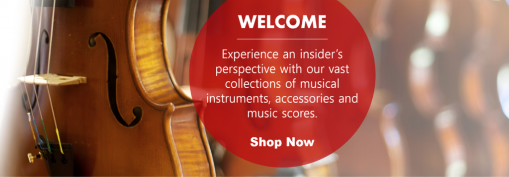Where to buy violin in singapore
