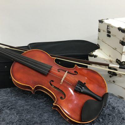 Intermediate Violin in Singapore Vn10